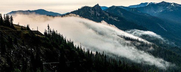 Hurricane Ridge at dawn