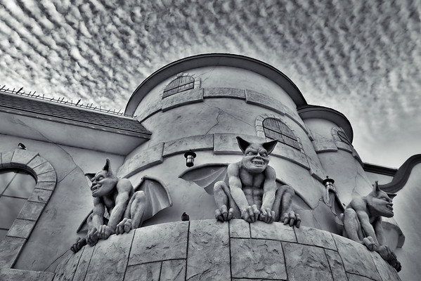 Pigeon and Gargoyles
