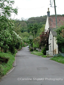 Looking up The Street from Manor House