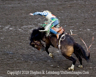 Bucking Bronco JPG 20110619_Rodeo - Cody - June 2011_7953