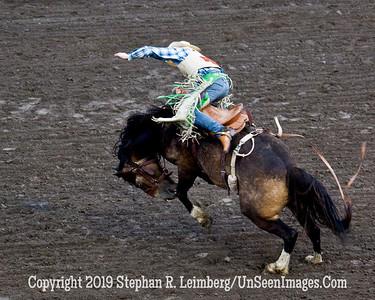 Bucking Bronco JPG 20110619_Rodeo - Cody - June 2011_7953