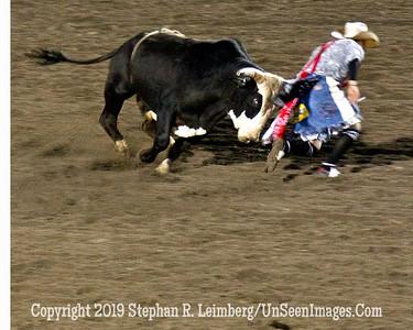 Horns of Dillemma JPG 20110619_Rodeo - Cody - June 2011_8284