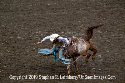 Leaving Horse  JPG 20110619_Rodeo - Cody - June 2011_7935