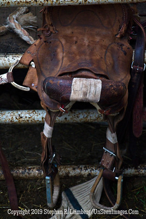 Saddle JPG 20110619_Rodeo - Cody - June 2011_7857