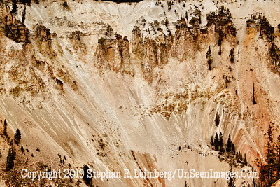 HOLLY WALL JPG 20110618_Yellowstone - June 2011_7117