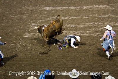 Stomped JPG 20110619_Rodeo - Cody - June 2011_8238