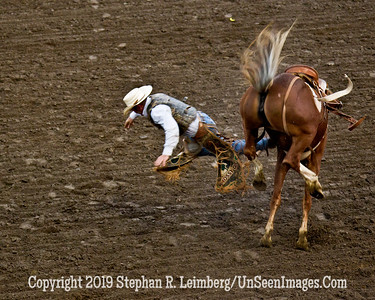 Parting Company JPG 20110619_Rodeo - Cody - June 2011_7978