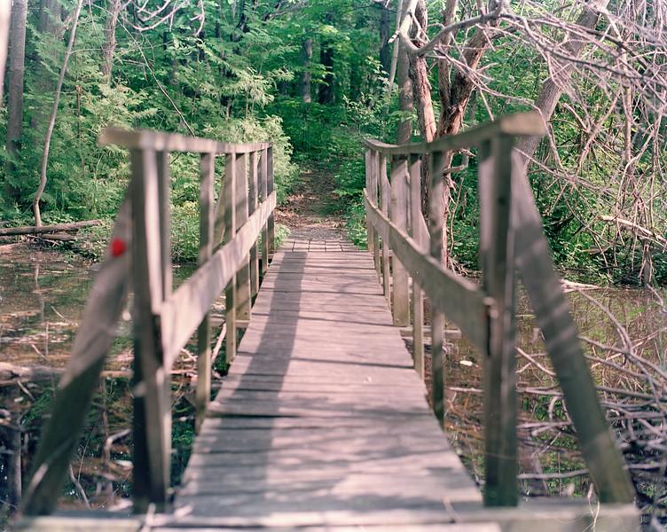 Bridge to Penny Toad Island