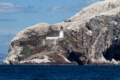 Bass Rock, Lothian, Scotland, United Kingdom 28 June 2011