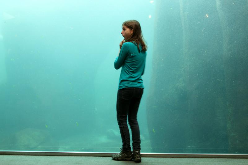 Sea Life Research Center