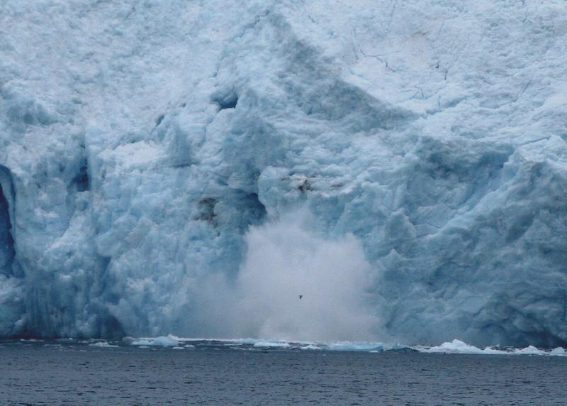 Aialik Glacier calving - Kenai Fjords National Park