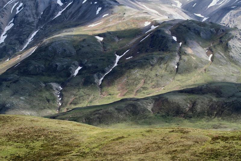 Tundra scenery in Denali National Park