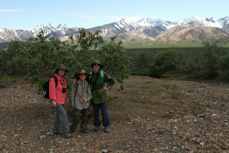 Hiking at Polychrome Pass - Denali National Park