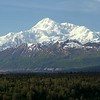 View of Mt. McKinley from Denali Viewpoint North, on the road from Talkeetna to Denali National Park.