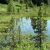A pond near Wonder Lake - Denali National Park.