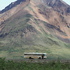 A private tour bus stops along the Denali Park Rd. I think they mistook our group for wildlife.