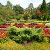 Duke Gardens - Durham
