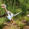 Outdoor dinosaur display - North Carolina Museum of Life and Science - Durham