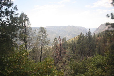 Up into the Sierra Madre
