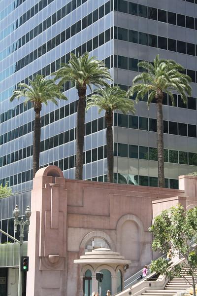 Palms downtown