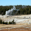 Beehive Geyser erupts across the Upper Geyser Basin.