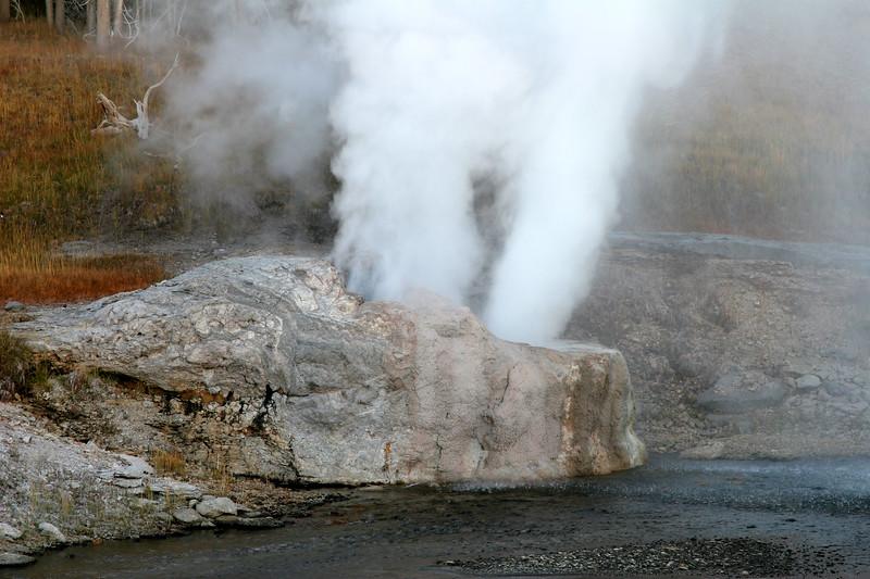 Riverside Geyser - Upper Geyser Basin
