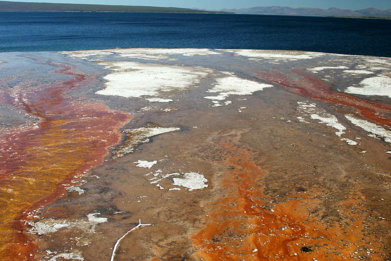 West Thumb Geyser Basin on the shores of Lake Yellowstone