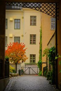 Uppsala Autumn