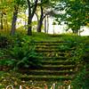 Salo Uskelan kirkko oravat syksy 061