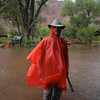 Flash flood in Zion