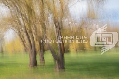 Park City golf course-08609
