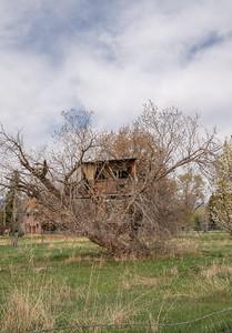 Spring City, Utah-1392