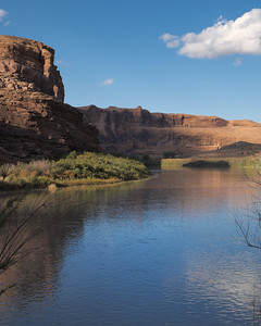 11 October 2013.  Along Colorado River north of Moab UT on Route 128.