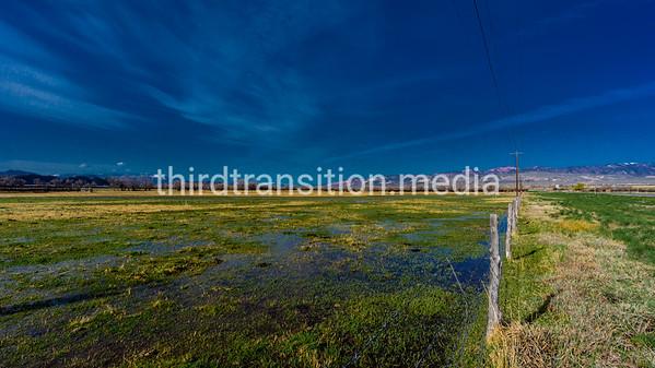 Wetlands in Utah