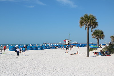 Florida 2016