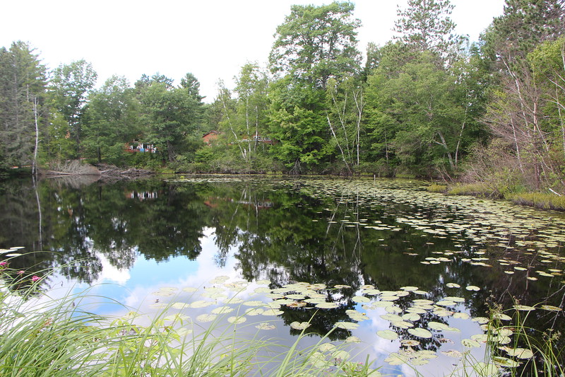 Treeland Resort