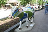 madison cows 018
