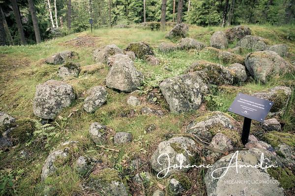 Vanutehtaanmäen muinaisjäännösalue