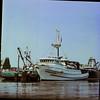 Interbay Fishermen's Center - Seattle