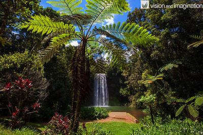 IMG_0634 Milla Milla Falls North QLD