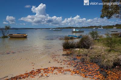 IMG_4566_Tin Can Bay - QLD