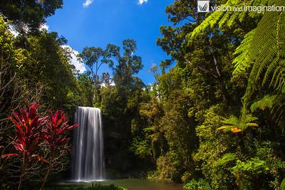 IMG_0568 Milla Milla Falls North QLD