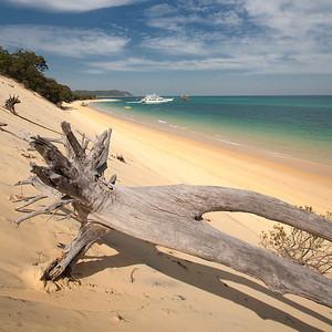IMG_6811 Moreton Island - QLD