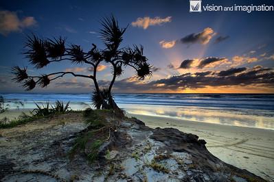 IMG_1025_Fraser Island-  QLD