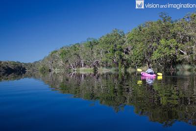 IMG_8656_Noosa Everglades - QLD