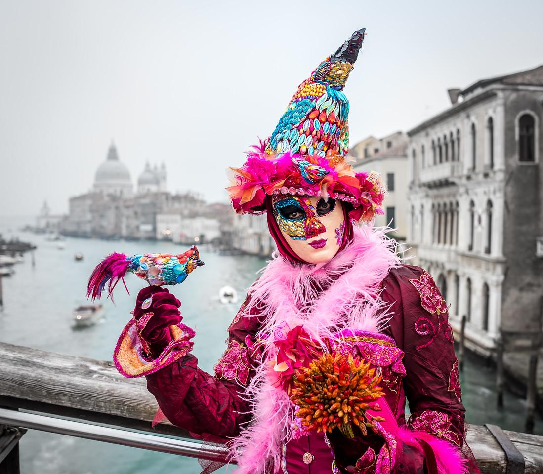 Carnival in Venice 2017