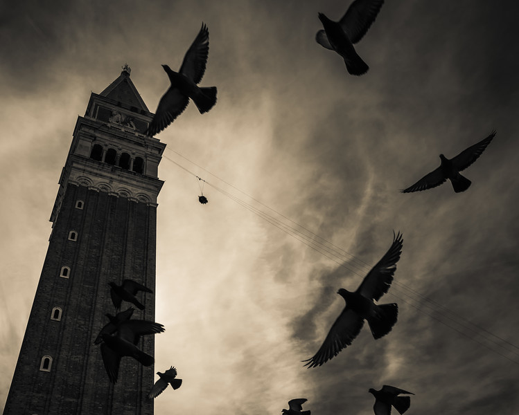 The flight of the eagle, Venice Carnival