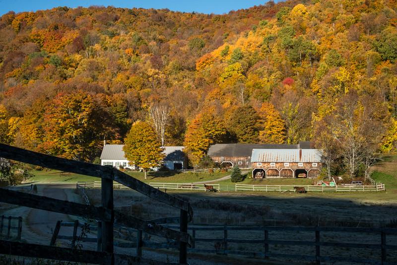 Vermont Horse Farm