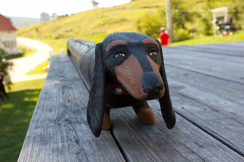 The art of the late Stephen Huneck, who created Dog Chapel at Dog Mountain in St. Johnsbury, VT.