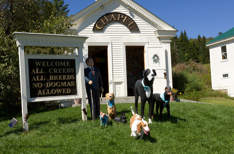 Our dog, Waldo, in front of Dog Chapel at Dog Mountain in St. Johnsbury, VT.
